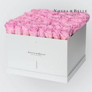 boites-roses-eternelles